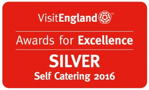 Category Tiers Land 2016_Self Cat Silver R