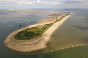 Spurn NNR - David Nichols